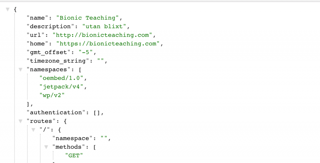WP Rest API Tips – Might be of interest