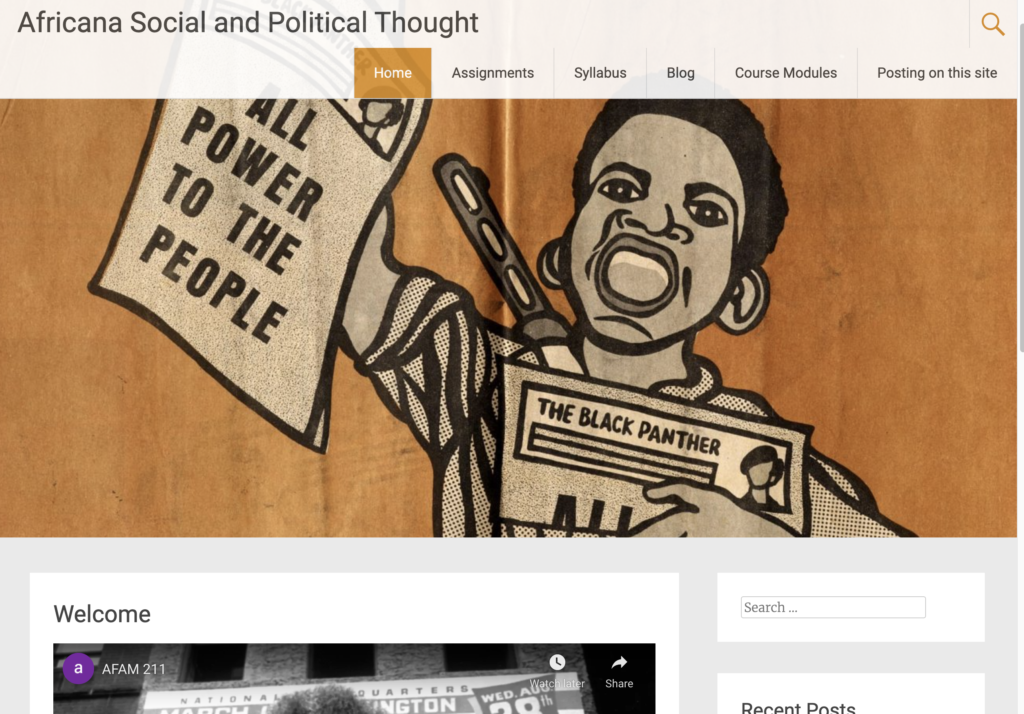 Africana Social and Political thought screenshot.