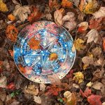 frisbee surrounded by bright fall leaves.